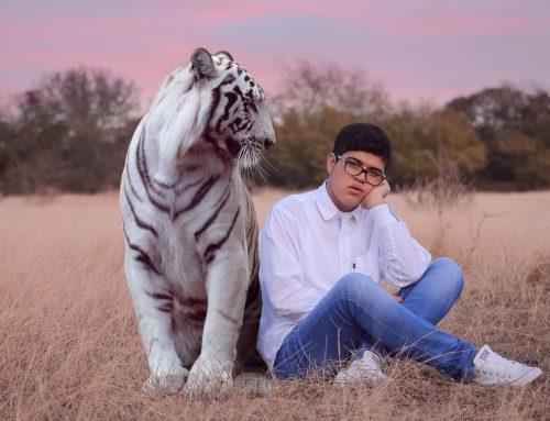 Wenn der Tiger in die Schule kommt Teil 1